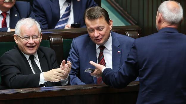 Posłowie PiS: Jarosław Kaczyński (L), Mariusz Błaszczak (C) i Antoni Macierewicz (P) /PAP