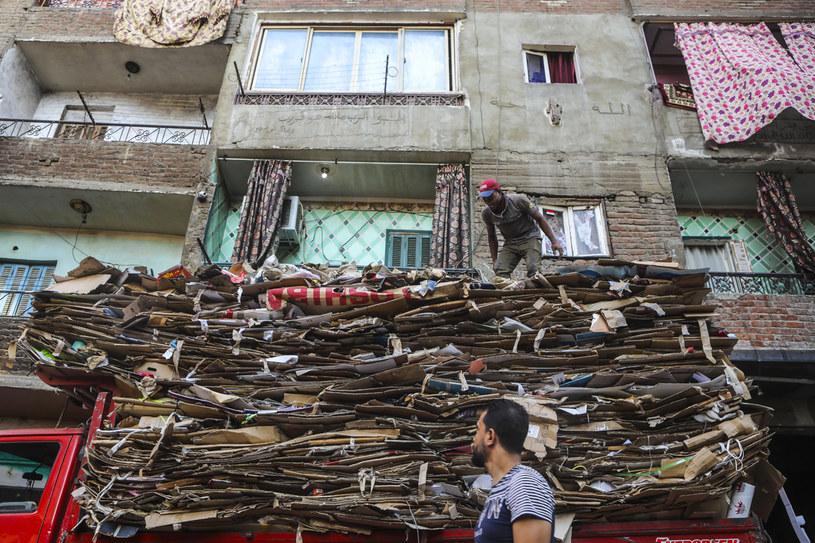 Poszczególne rodziny specjalizują się w przetwarzaniu określonych typów odpadów /Getty Images