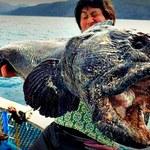 Poszedł na ryby. Złowił prawdziwego mutanta!
