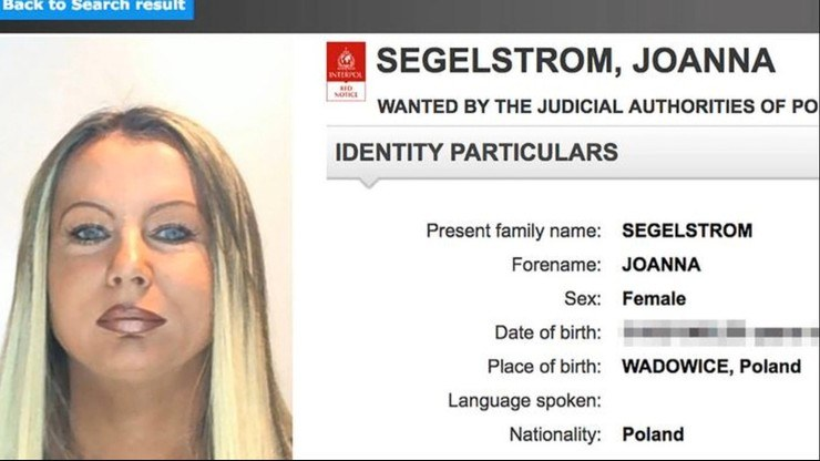 Poszukiwana Joanna Segelstrom /Polsat News