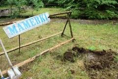 Poszukiwania Bursztynowej Komnaty ruszyły w Mamerkach