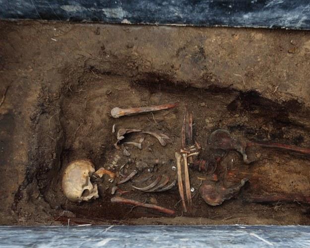 Poszukiwania ofiar zbrodni komunizmu na cmentarzu przy ulicy Walbrzyskiej w Warszawie /Stanisław Kowalczuk /East News