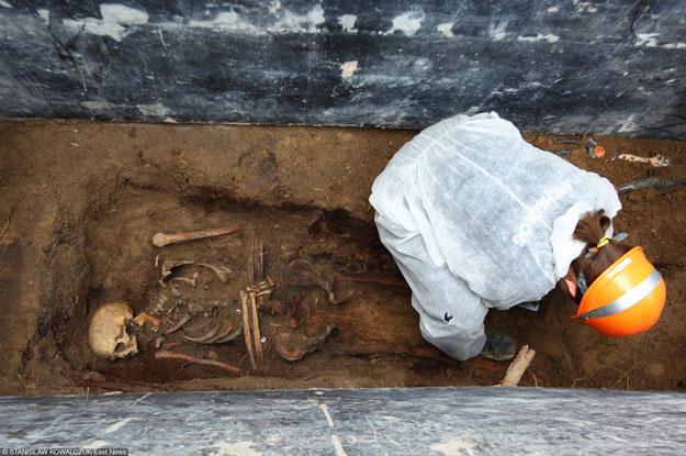 Poszukiwania ofiar zbrodni komunizmu na cmentarzu przy ulicy Wałbrzyskiej w Warszawie /Stanisław Kowalczuk /East News