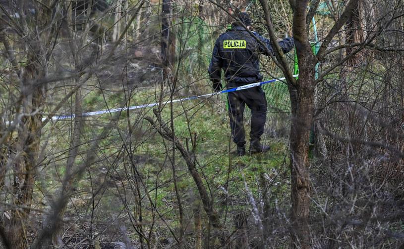 Poszukiwania w Sopocie w związku z zaginięciem Iwony Wieczorek /Karolina Misztal /Reporter