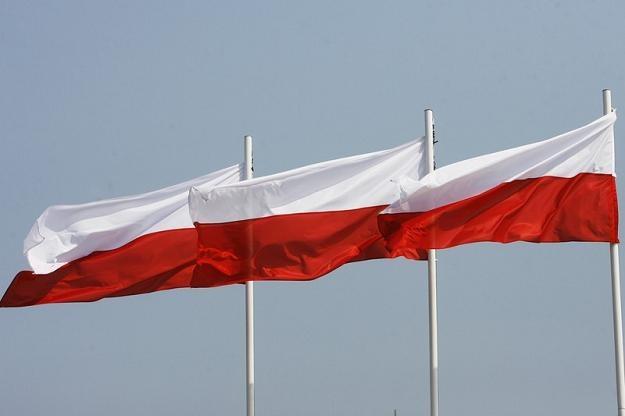 Potencjał naszego kraju jest olbrzymi, ale go nie wykorzystujemy... Fot. Zbyszek Kaczmarek /Agencja SE/East News