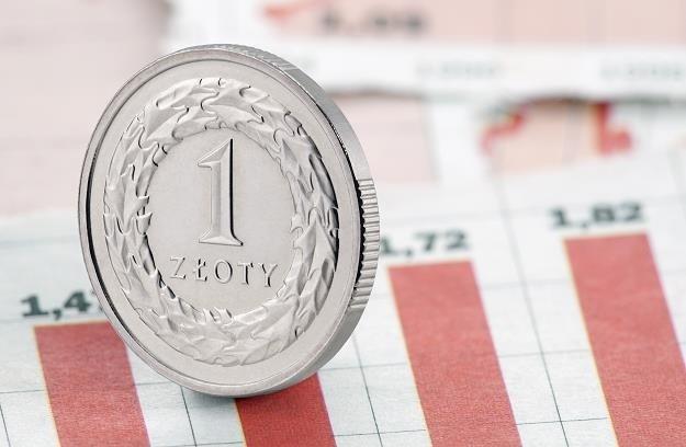 Potencjał wzrostowy polskiej waluty zdaje się wyczerpywać? /123RF/PICSEL