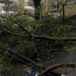 Potężny huragan pustoszy Portoryko. Cała wyspa została pozbawiona prądu