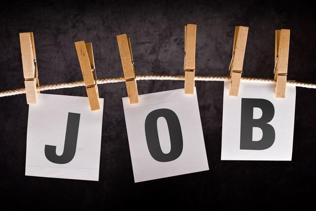Potrzebujemy nowych rozwiązań dla rynku pracy. BDP jest jednym z wariantów /123RF/PICSEL