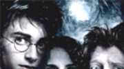 Potter: Jest Diggory