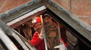 Potwierdzenie: Odnaleziono szczątki Caravaggia