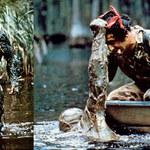 Potwór z bagien: Bestia groźniejsza niż aligatory