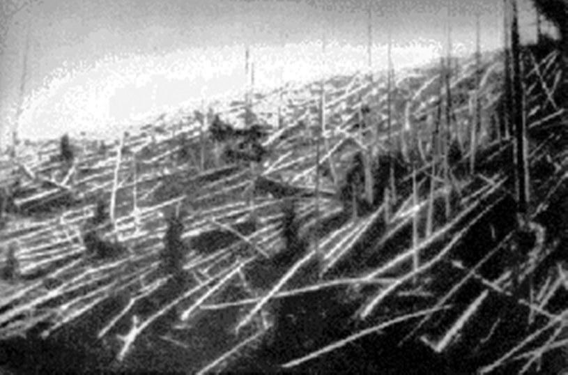 Powalone drzewa w Tungusce /materiały prasowe