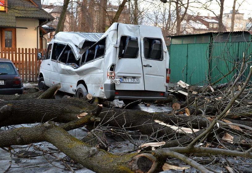 Powalone przez wiatr drzewo zniszczyło kilka samochodów w Zakopanem /Grzegorz Momot /PAP
