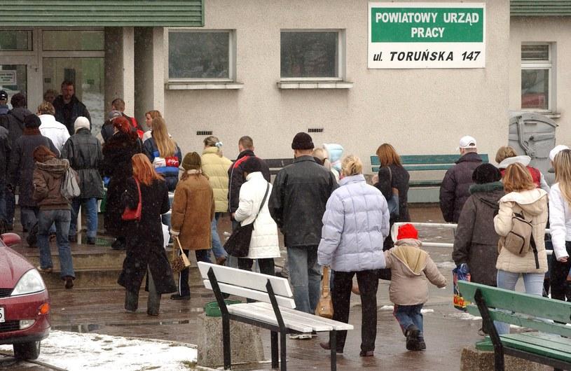 Powiatowy Urząd Pracy w Bydgoszczy / Tytus Żmijewski    /Agencja FORUM