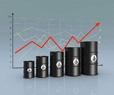 Powiew optymizmu na rynku ropy