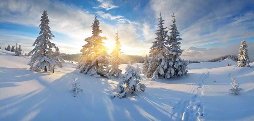 """""""Powinniśmy się więc przyzwyczajać do Świąt bez śniegu"""" /123RF/PICSEL"""