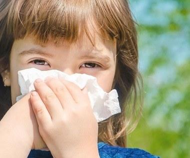 Powitaj wiosnę, nie alergię!