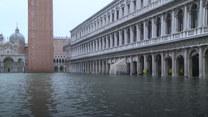 """Powódź w Wenecji. """"To nasza wina"""""""