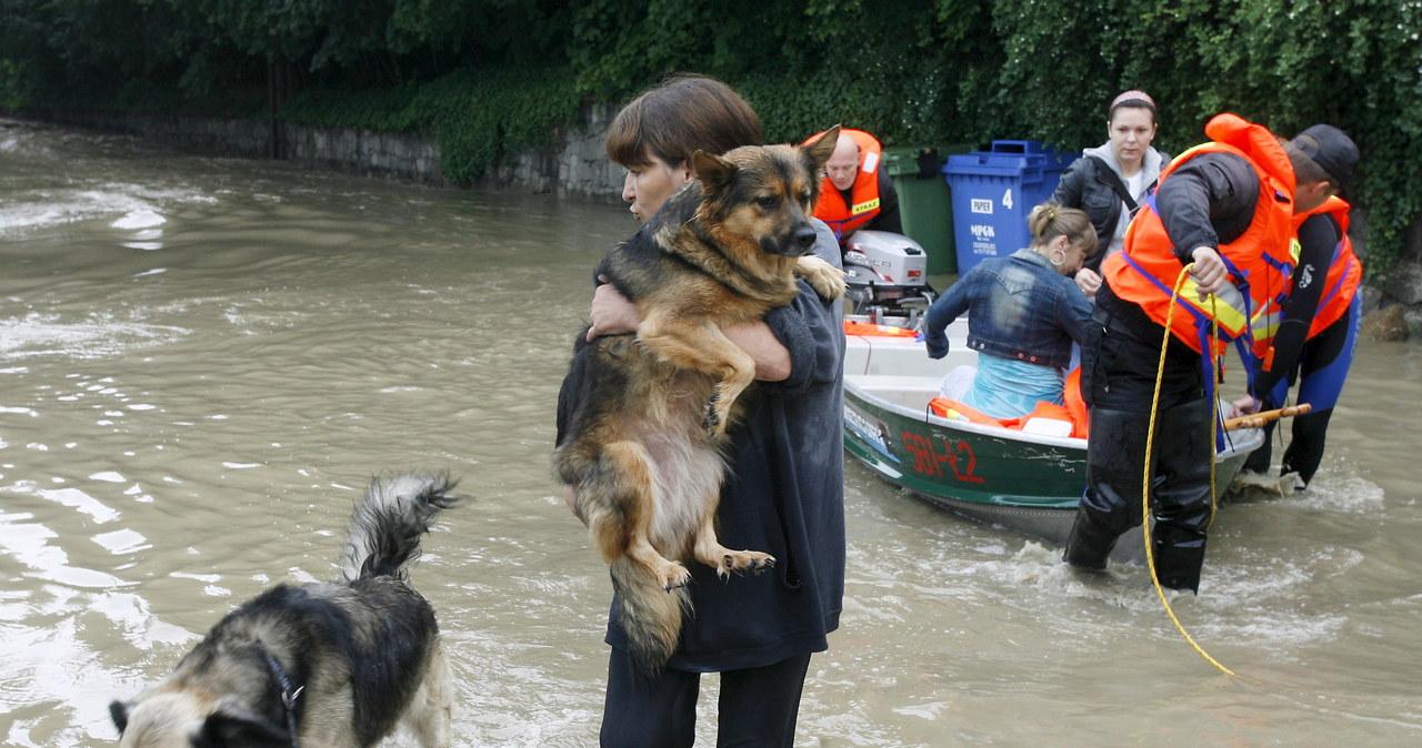 Powódź w Zgorzelcu