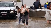 Powodzie w Australii. Krokodyle na ulicach