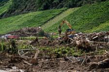 """""""Powodziowe"""". Sprzedają wino w brudnych butelkach, by pomóc ratować winnice"""