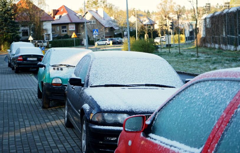 Powrót zimy w Szczecinie / Marcin Bielecki    /PAP