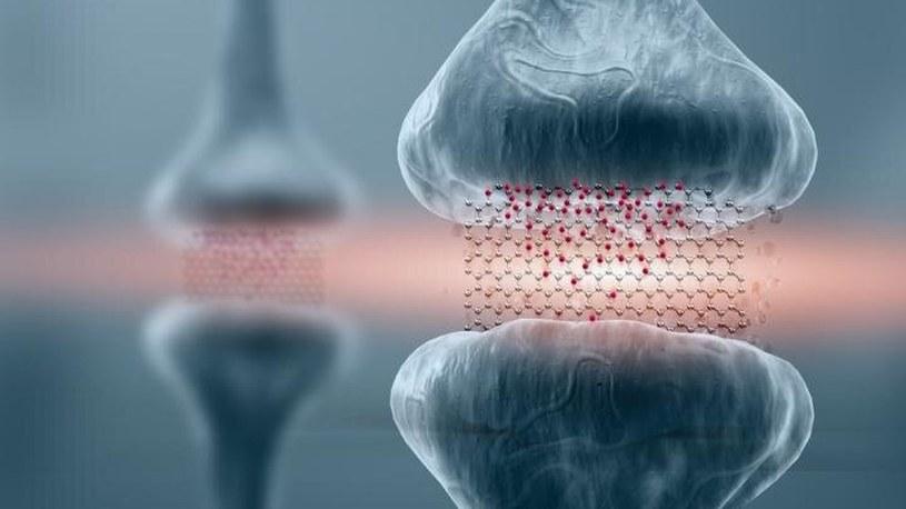 Powstał grafenowy memrystor, który jest przyszłością komputerów biomimetycznych /Geekweek