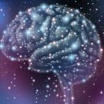Powstał najdokładniejszy trójwymiarowy model mózgu