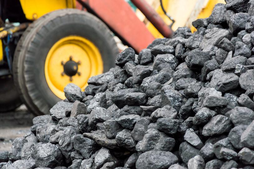 Powstanie centralny magazyn węgla energetycznego? /©123RF/PICSEL