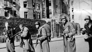 """""""Powstanie Warszawskie 1944. Gloria Victis"""""""