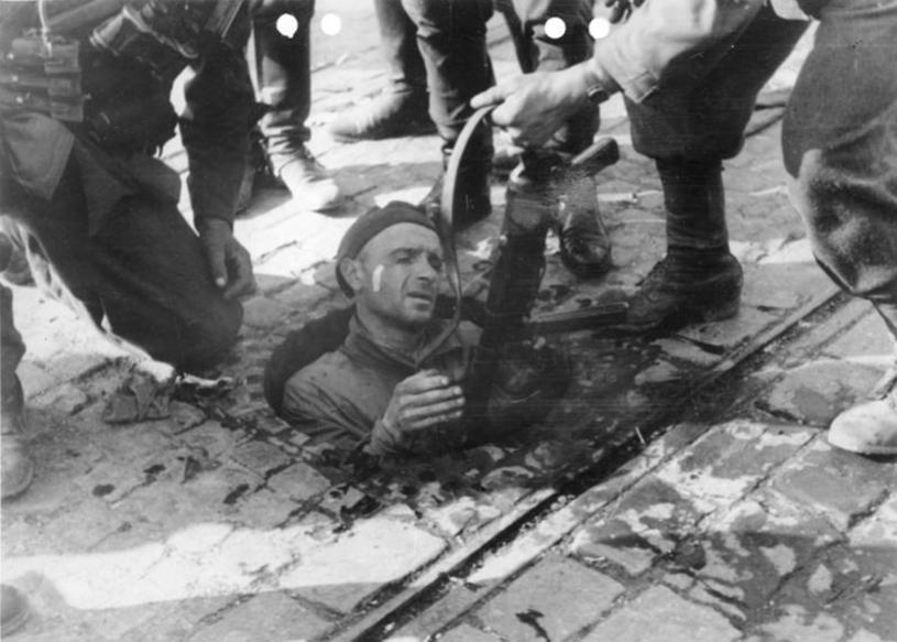 Powstaniec wychodzi z tuneli kanalizacji miejskiej po zakończeniu walk w mieście /Laski Diffusion /East News