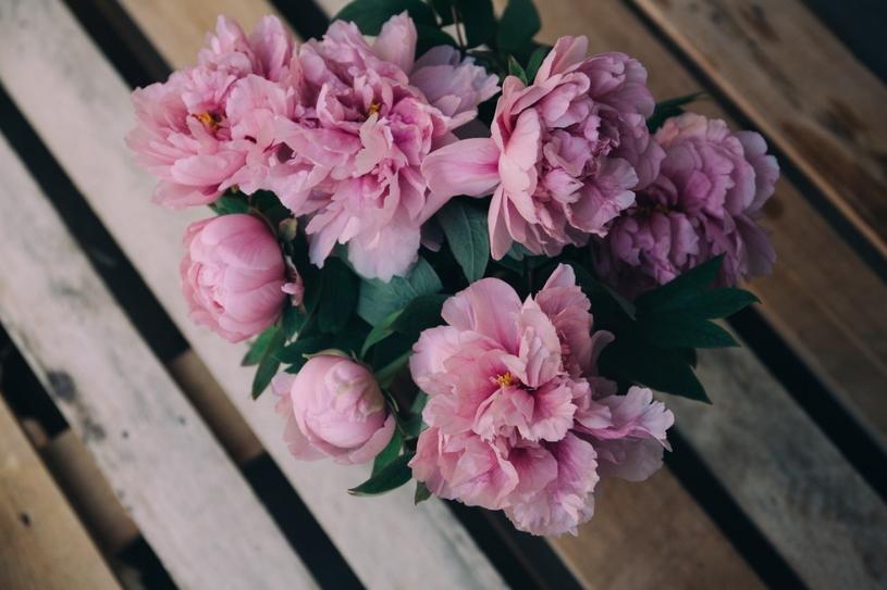 Poza perfumami, uniwersalnym podarunkiem są także kwiaty i słodkości /Unsplash