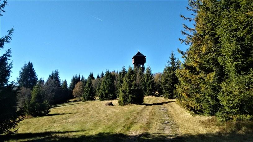 Poza szczątkami samolotu możemy wybrać się na wieżę widokową na Magórkach /Jakub Zygmunt /materiał zewnętrzny