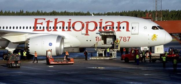 Pożar dreamlinera utrudnił pracę lotniska Heathrow /JOHAN NILSSON /PAP/EPA