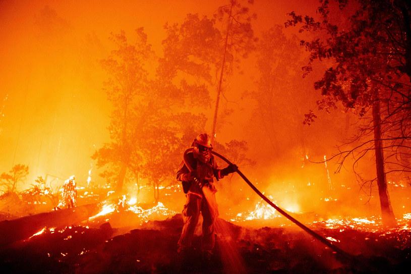 Pożar El Dorado z 2020 r. ugaszono dopiero po dwóch miesiącach. Zginął  w nim strażak, a 13 osób zostało rannych /East News