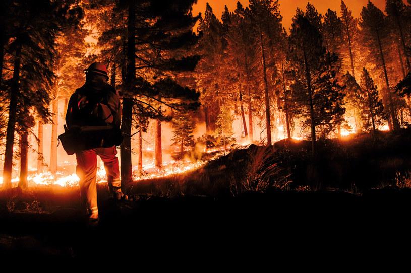 Pożar lasów w Kalifornii /SOPA Images /Getty Images