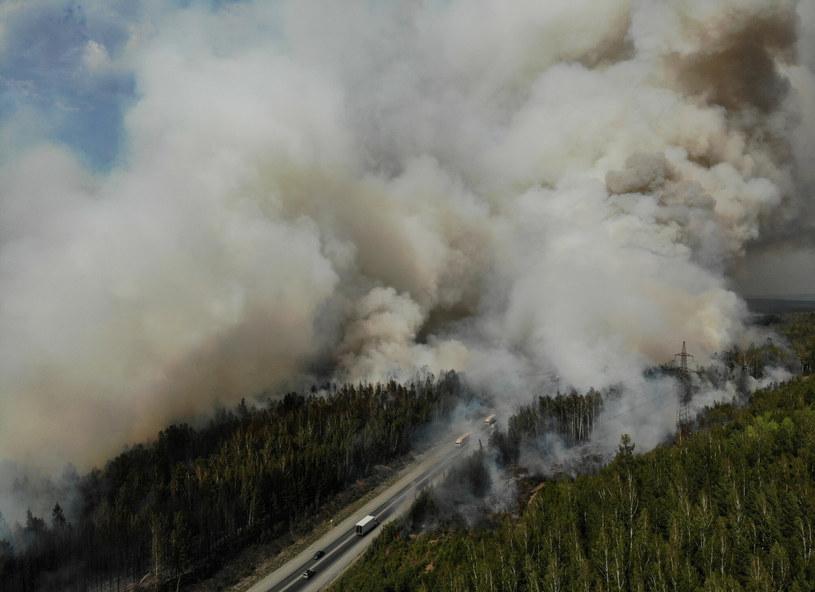 Pożar lasu w Rosji /SPUTNIK Russia /East News