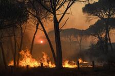 Pożar na Lazurowym Wybrzeżu. Prezydent: Przesądzą najbliższe godziny