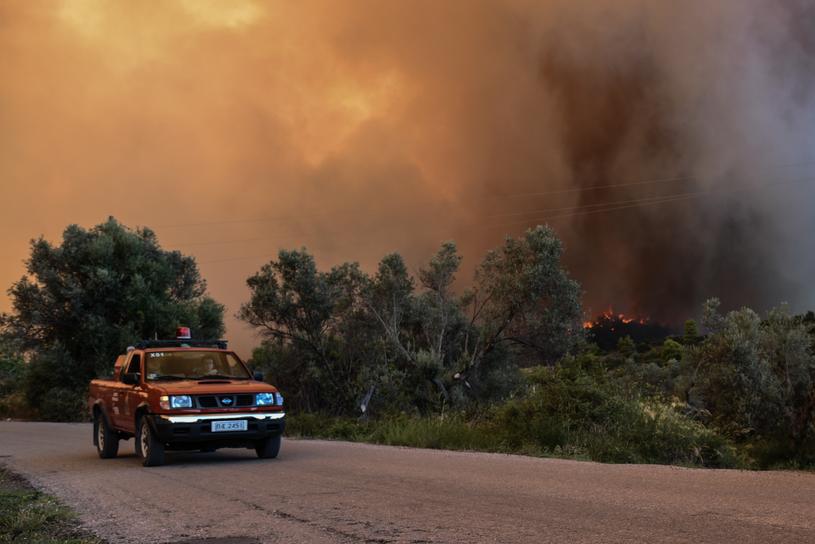 Pożar na wyspie Eubea /WASSILIS ASWESTOPOULOS /PAP/EPA