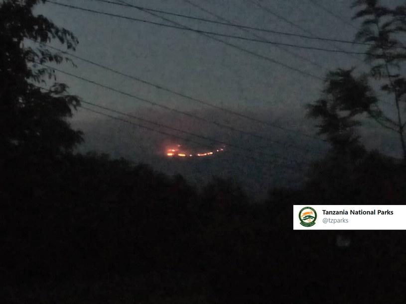 Pożar na zboczach Kilimandżaro /Twitter /