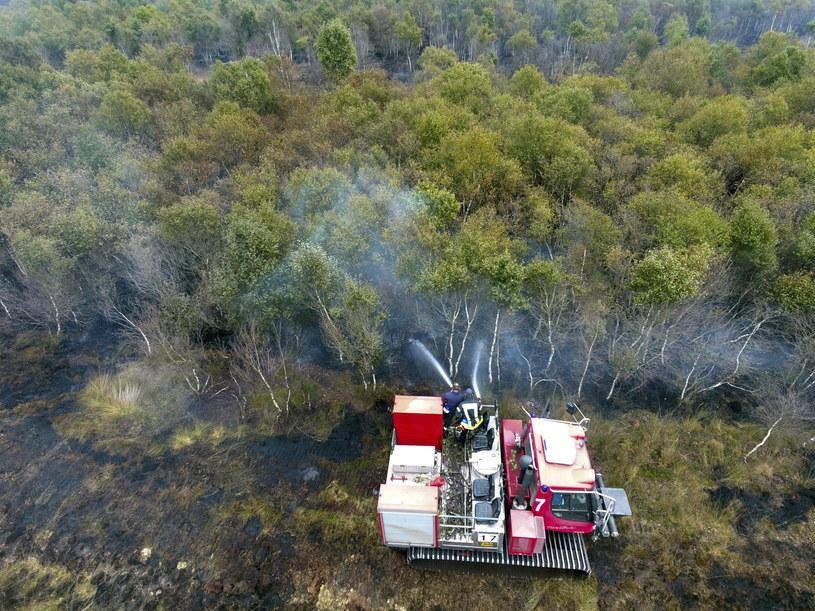 Pożar objął powierzchnię 800 ha /BUNDESWEHR/WTD 91 HANDOUT /PAP/EPA