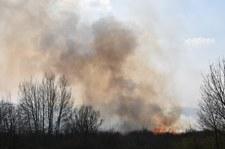 Pożar samochodu na Opolszczyźnie. Nie żyją dwie osoby