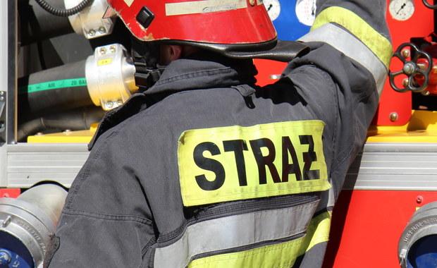 Pożar szkoły w Radowie Wielkim. Strażacy walczą z ogniem