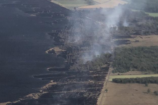 Pożar torfowiska wywołały 3 września testy pocisków rakietowych. /BUNDESWEHR/WTD 91 HANDOUT /PAP/EPA