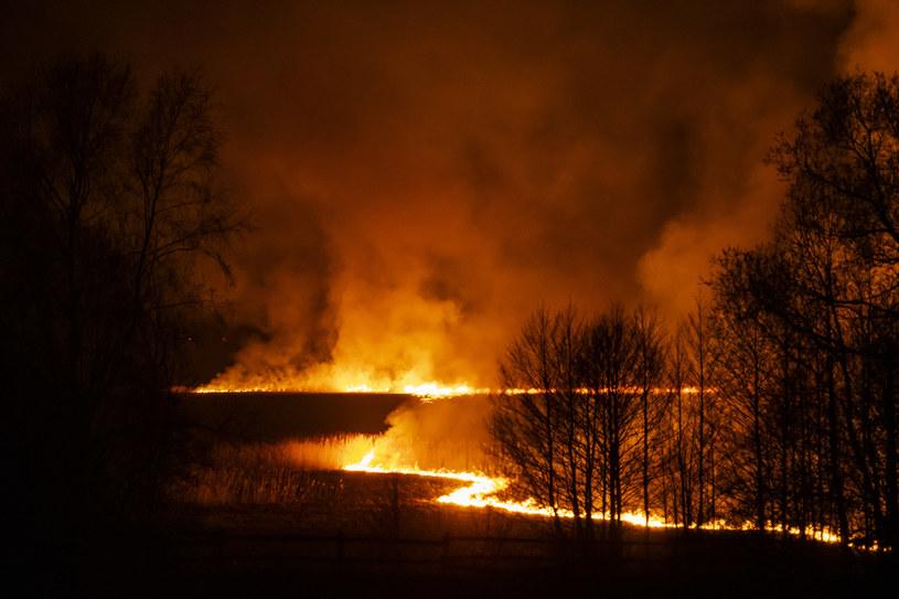 Pożar trwa od niedzieli 19 kwietnia /MICHAL KOSC /Agencja FORUM