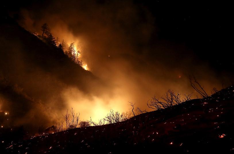 Pożar trwał kilka tygodni; zdj. ilustracyjne /AFP