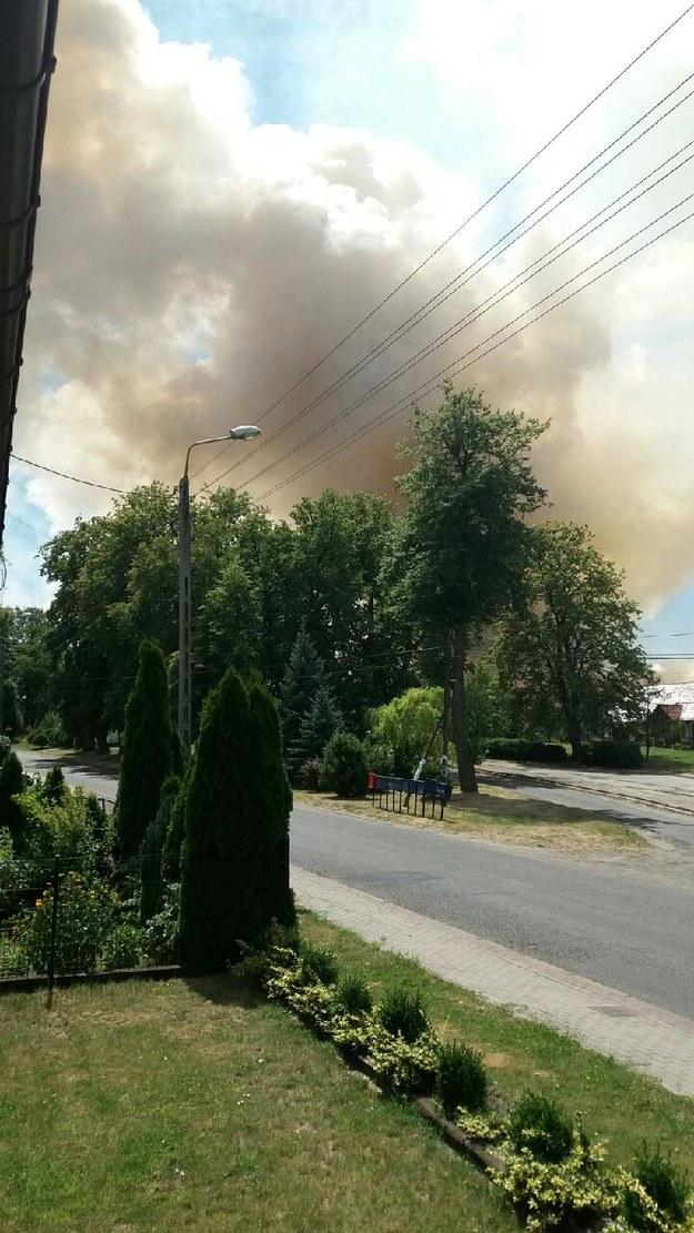 Pożar upraw, zdj. z Gorącej Linii RMF FM /Gorąca Linia RMF FM