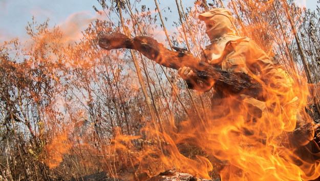 Pożar w Amazonii /Joedson Alves /PAP/EPA