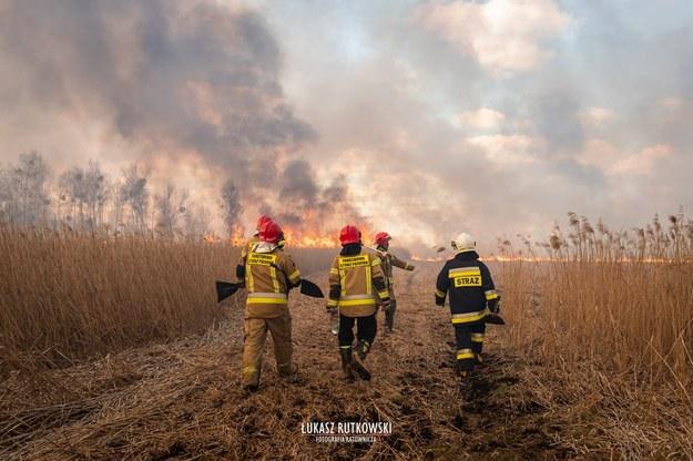 Pożar w Biebrzańskim Parku Narodowym /Łukasz Rutkowski-Fotografia