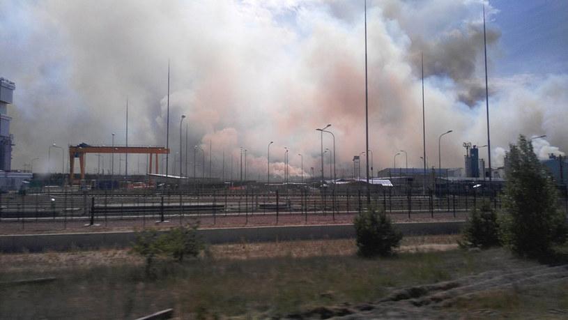 Pożar w czarnobylskiej zonie /NATALKA LEVINA /AFP